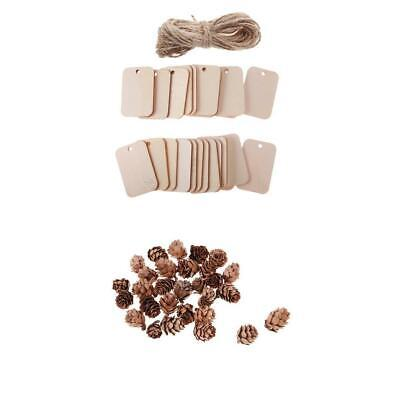 Top Quality Pine Cones 30PCS&Wooden Wish Tree Hanging Tags 25PCS with Rope