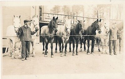 Vintage RPPC 8 Horses at Rope, Auction? Show? Real Photo Postcard, Cyko