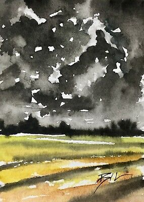 ACEO Original Art Painting by Bill Lupton  - The Storm
