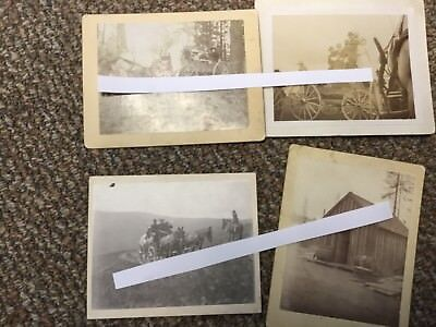 4 Antique Photos, Horse-Drawn Wagons, Horses Cowboy Cabin,19th Century, Old West
