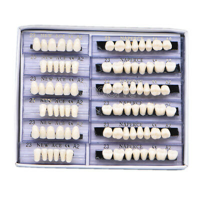 168pc Denture Acrylic Resin 24 Plate Teeth Upper Lower Shade Size 23F#A2 Dental