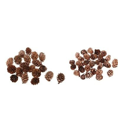50x Assorted Size Natural Pinecones Pine Cone for Christmas Decoration DIY