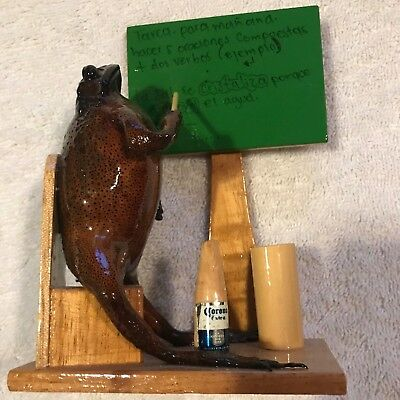 Taxidermy Frog School Teacher Chalkboard New Real Frog Corona Man Cave