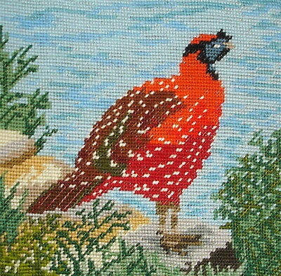 Vintage Cross Stitch Tapestry Picture Unframed Grouse