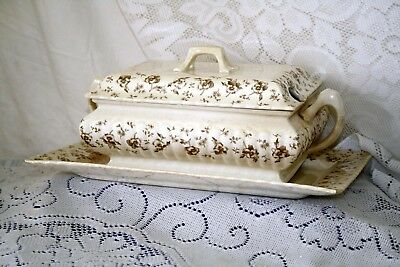 Amazing Antique Mercer China Transferware Floral Tureen And Under Platter