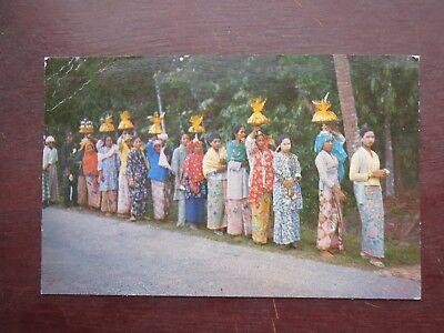 MALAY WEDDING POSTCARD (c1960)
