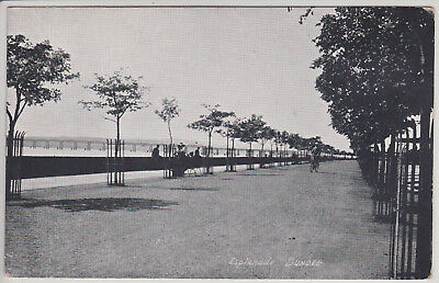 Dundee, Scotland, Uk. Esplanade. Antique Postcard