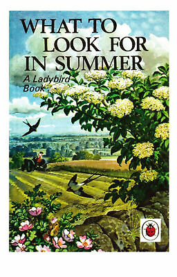 POSTCARD Ladybird Book Cover What To Look For In Summer