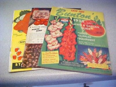 Vintage Garden/seed Catalogs -Lot Of 3-1950's-Buton's-Allen's-Stahelin's