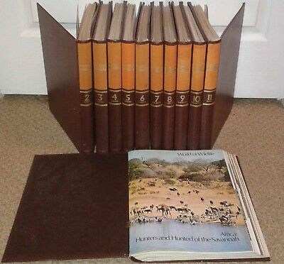 World Of Wildlife - Partwork Magazines - Complete Pdf Collection On Dvd