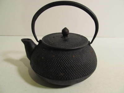 Vintage Cast Iron Teapot/Kettle w/infuser 16oz Japan