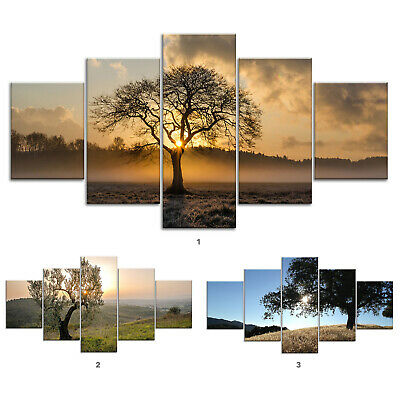 Oak Tree Meadow Canvas Print Painting Framed Home Decor Wall Art ee Poster 5Pcs