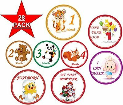 Baby Monthly Stickers 28 - First Year Stickers - Belly Stickers Boy or Girl