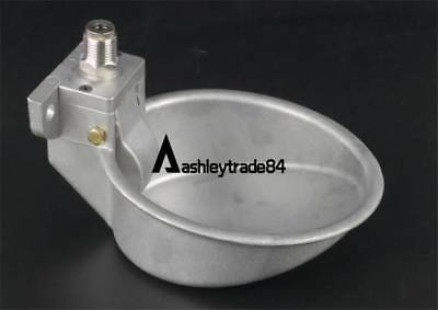 Piglets Pig Water Bowl Drinking Fountain Faucets Pig Drinking Bowl