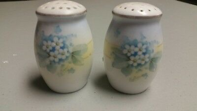 Royal Rudolstadt Hand Painted Germany Salt & Pepper Shakers