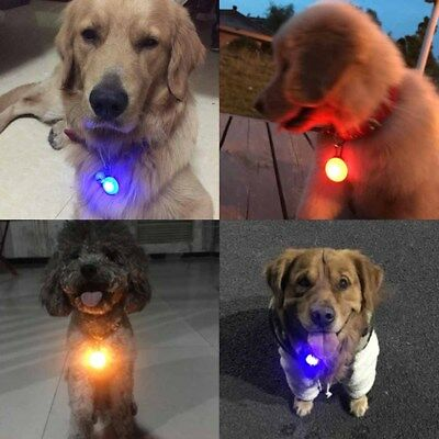Fascinating Pet Dog Cat Puppy LED Flashing Collar Safety Night Light Pendant NEW