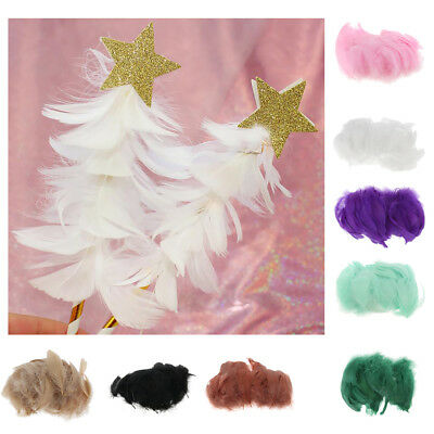 BULK 200 feathers 6-10cm 8 Colour Choice DIY Millinery Wedding Crafts Cake