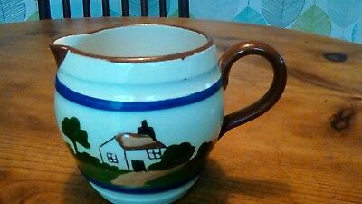 Country style jug (Torquay pottery) with Lincoln reference