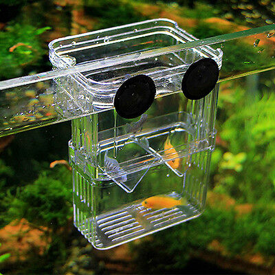 New Aquarium Fish Tank Guppy Double Breeding Breeder Rearing Trap Box Hatchery