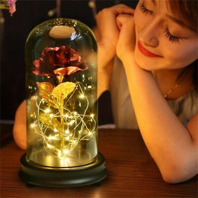 24K Gold Plating Rose Flower in a Glass Dome w/LED Light Valentine's Day Gift US