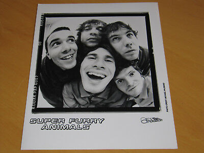 Super Furry Animals - Original Uk Promo Press Photo (B)