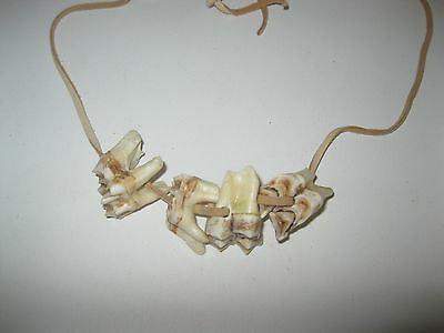 Mountain man necklace.....V669...Moose teeth pendant....replica primitive