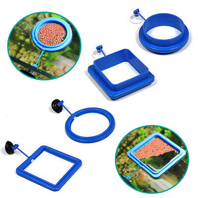 1PC Buoyancy Aquarium Fish Feeding Ring Food Floating Circle Fashion Plant