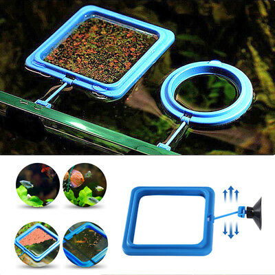 Aquarium Fish Tank Square Circle Feeding Ring Station Floating Food Fish Feeder