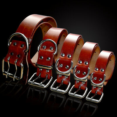Best Genuine Leather Dog Collars for Small Large Dogs Yorkie Rottweiler XS-XXL