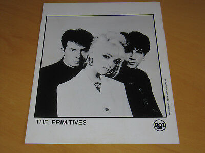 The Primitives - Original Uk Promo Press Photo (A)