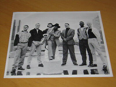 The International Beat - Original Uk Promo Press Photo (A) (Specials 2 Tone)