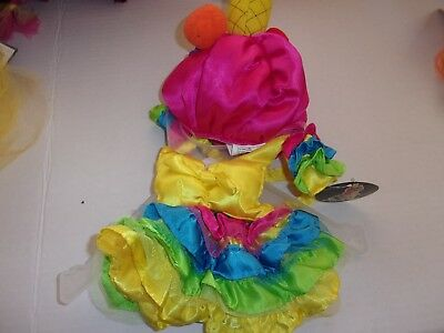 Carnival tropical girl costume dog new pet Petco halloween XS M L cat