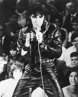 Rock & Roll ELVIS PRESLEY Glossy 8x10 Photo Actor Singer Print Poster