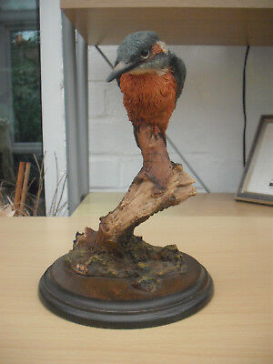 Country Artists  Cooper & Company Painted Resin  Decorative Kingfisher Statue