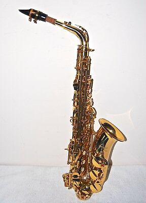 Antigua X/P Series Saxophone - An Elegant Instrument Made for Students/Beginners
