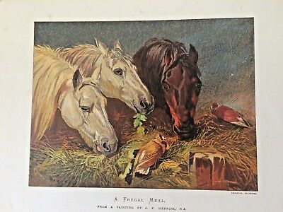 The Frugal Meal  from a painting  by  J. F. Herring  cromolitografia 1869