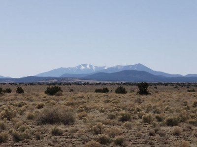 Gorgeous Arizona Lot 25 miles from Grand Canyon- Buildable $$INVEST$ (Lot 84)