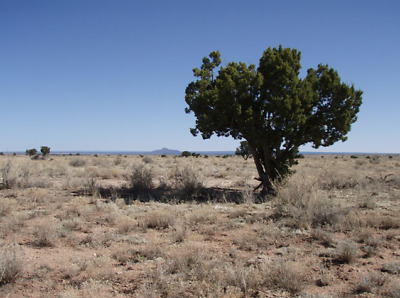 Gorgeous Arizona Lot 25 miles from Grand Canyon- Buildable $$INVEST$$ (Lot 85)