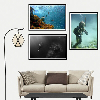 Diver Underwater World Canvas Poster Print Picture living Room Home Art Decor