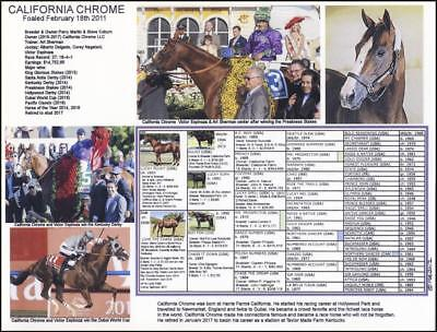 CALIFORNIA CHROME  Kentucky Derby Preakness Winner picture/photo with pedigree.