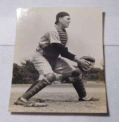 Rare Vintage Bill Dickey Wire Photo-7x9 Inches-New York Yankees
