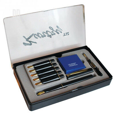 Kurtzy 14 Piece Calligraphy Writing Fountain Pen Set with 6 Nibs and...