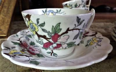 Booths Chinese Tree 7 Saucers And 6 Cups Made In England