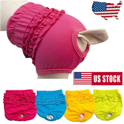 Pet Dog Physiological Pants Diaper Panties Underwear for Female Dog Washable USA