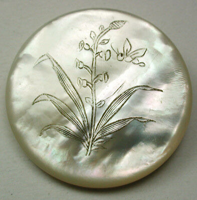 "Antique Shell Button MOP w Etched Bee & Flowers Scene 1 & 3/16"" Pretty!"