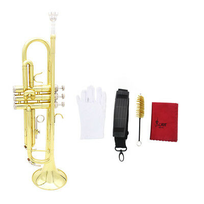 Bb Beginner Trumpet Brass + Care Kit + Case USA Stock for Student Kids Gift P1I6