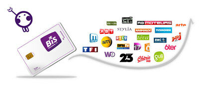 12 Months Viaccess Subscription To BIS TV France Panorama Satellite TV Channels