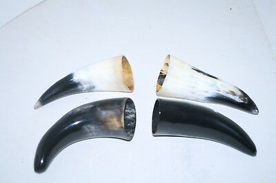 4 Cow horn tips ....  v4d82 ... Natural colored polished cow horns.,..