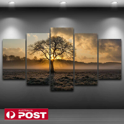 5Pcs Unframed Oil Painting Picture Abstract Art Canvas Print Home Wall Decor AU