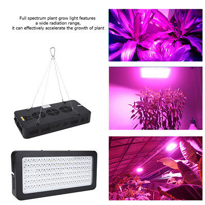 900W LED Grow Light Innen Pflanzen Vollspektrum Voll Spektrum Lampe Wachsen BG A